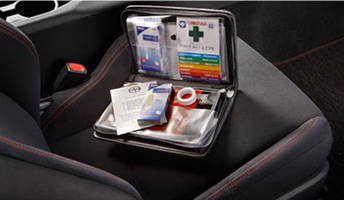 vehicle first aid bag